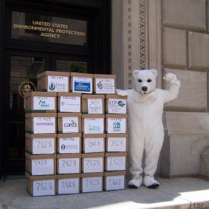 Carbon Rule Comment Delivery with Polar Bear
