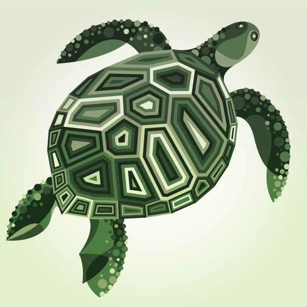 mwm_wildlife_series_turtle_1