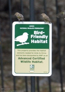 birdfriendlyhabitat